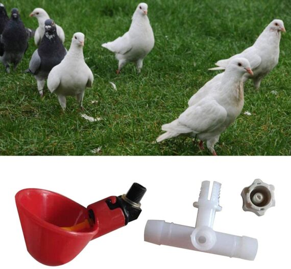 VVXXMO 30 Pcs/set Poultry Automatic Feeder,Birds Chicken Water Drinking Cup,Feeder Bowl,Feeding Watering Supplies