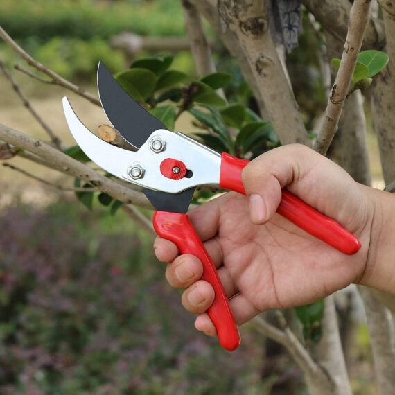 Eono by Amazon 8.5 Inch Traditional Bypass Pruning Shears,Tree Trimmers Secateurs,Garden Pruners,Pruners and Clippers,Professional Tree and Branch Garden Shears