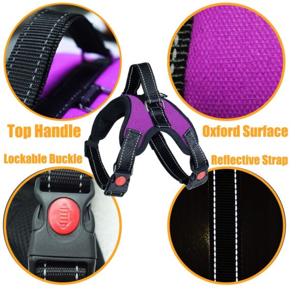 Musonic No Pull Dog Harness, Breathable Adjustable Comfort, Free Leash Included, for Small Medium Large Dog, Best for Training Walking(S, Purple)