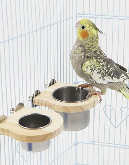 QBLEEV 2 Pcs Birdcage Food Cups Set,Parrot Stainless Steel Watering and Feeding Feeder Bowl,Hanging Bird Feeder Box Food Storage Dishes for Parakeets Conures Cockatiels Budgie African Greys