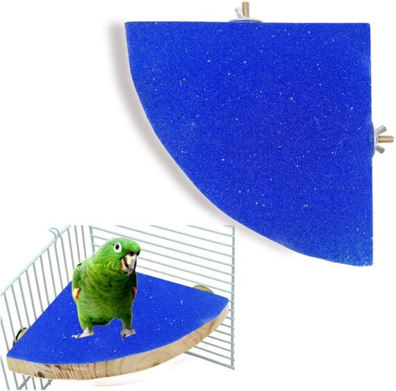 Fan-Shaped Pet Bird Perch Stand Natural Wood Matte Surface Parrot Birdcage Platform Stand Playground Cage Accessories for Small Medium Parrot Rat Small Animal Budgie Exercise Toy (Blue)