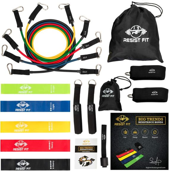 Resistance Bands Set By Resist Fit-10-Level Adjustable Home Gym Equipment - Fitness Gear for Therapy Support, Stretching, Training, Gymnastics, Sports - Portable Workout Equipment with Carry Bag