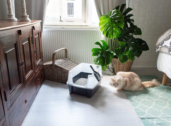 Iris Ohyama, Cat Litter box with scoop - CLH-12 - Plastic, Grey, 38 x 48.5 x 30.5 cm