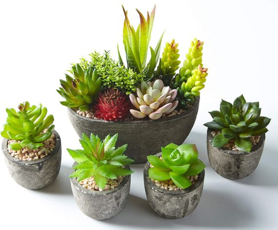Jobary Set of 5 Artificial Succulent Potteds (Includes 10 Plants), Colourful and Decorative Faux Succulent Plants with Stones, Ideal for Home, Office and Outdoor Decor